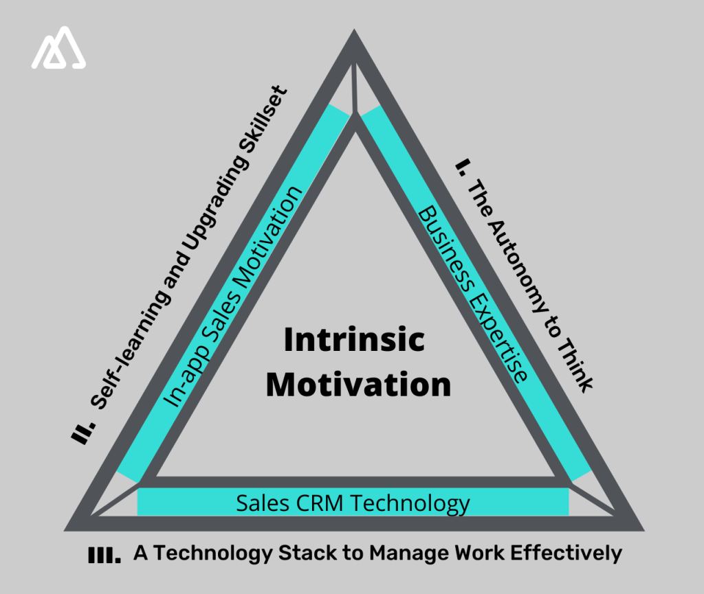 Intrinsic approach to sales motivation approach and its outcomes